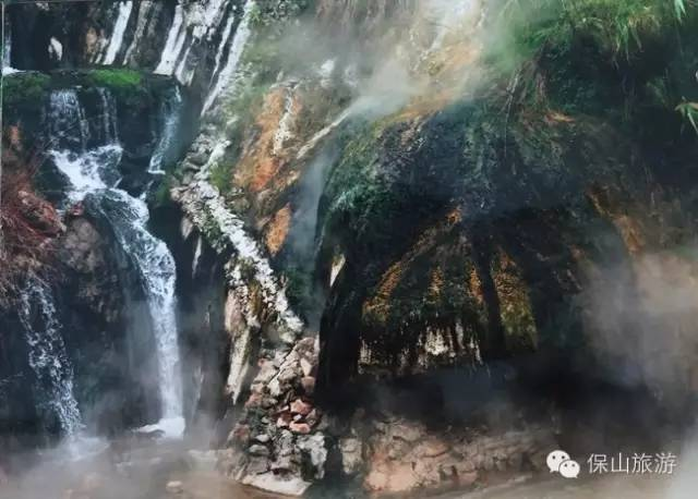 申邵怀 原始森林